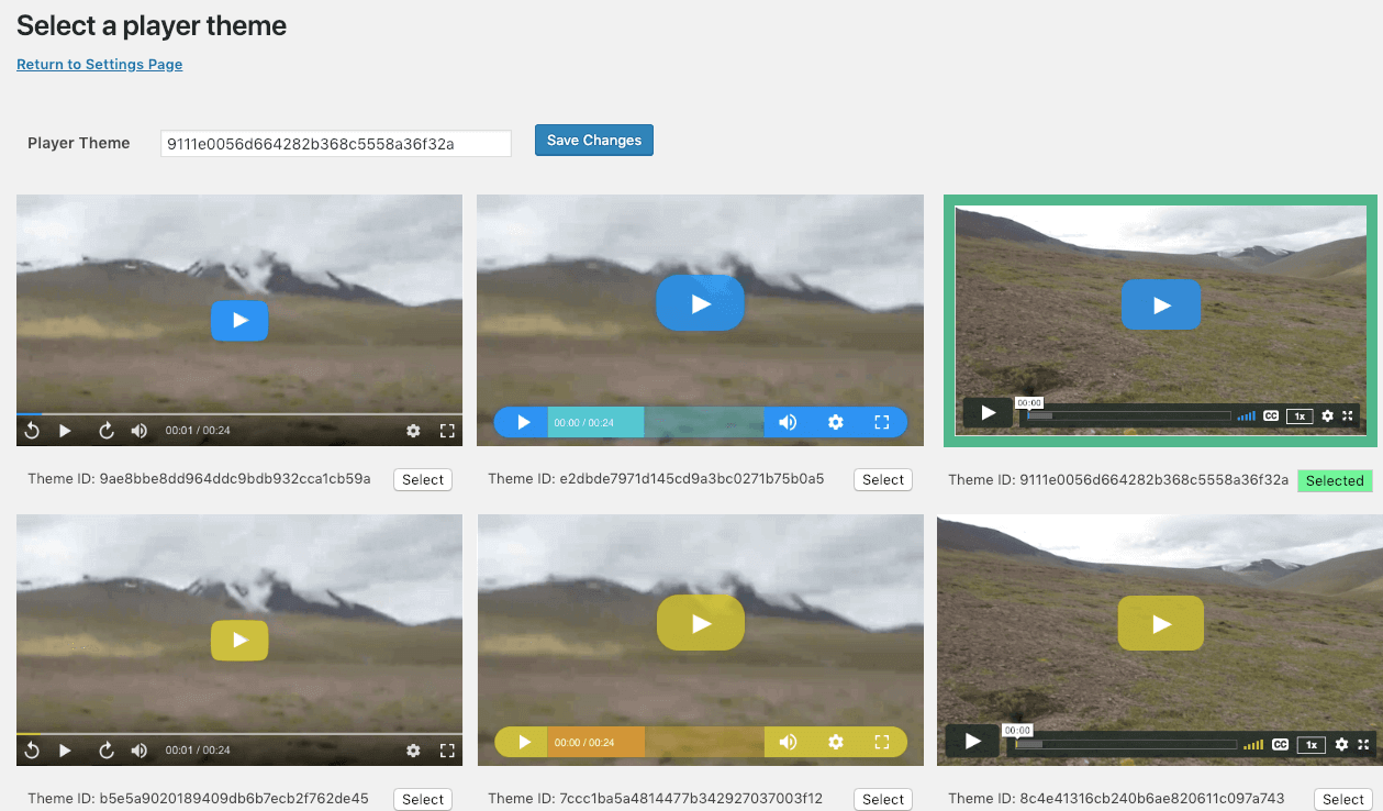 Select the best themes from the video player themes available